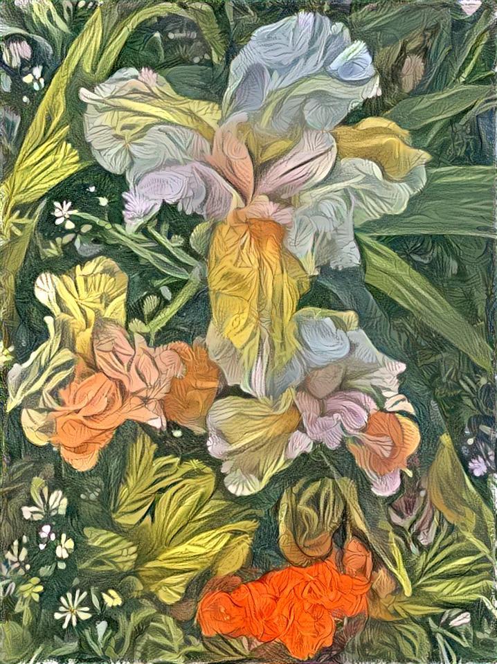 Irises 3